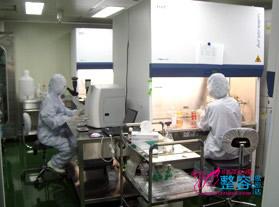 韩国stc干细胞研究所